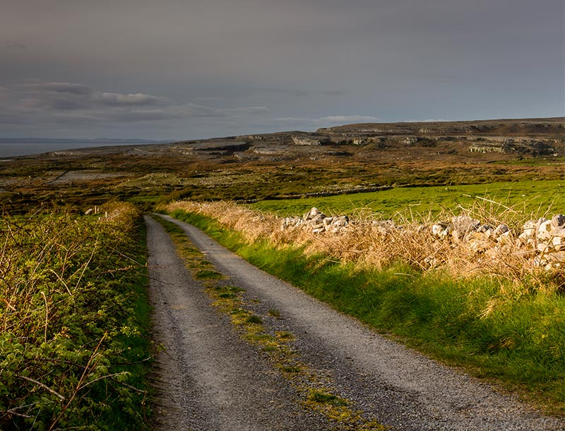 Lots of country lanes like this to be walked in the Burren